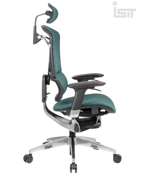 Эргономичное кресло GTCHAIR I-see SE-13D