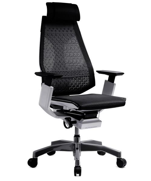 Эргономичное кресло Genidia в сетке