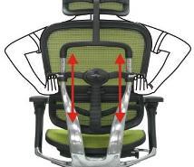 Кресло компьютерное ERGOHUMAN эргономичное черное. Описание 1